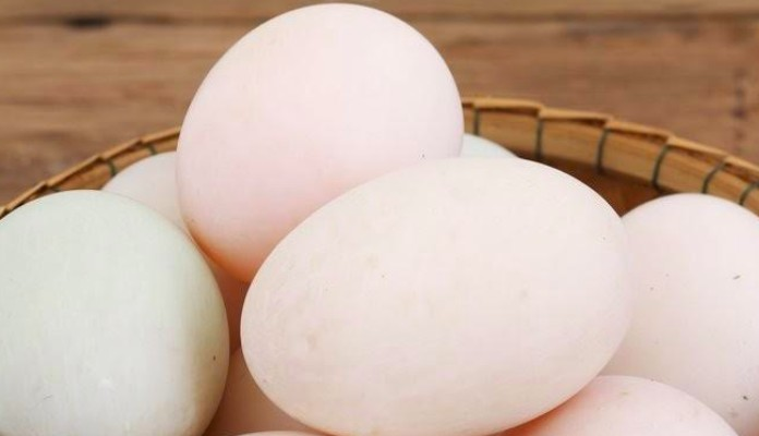 Duck Eggs Health Benefits, Nutrition Facts, and Side Effects