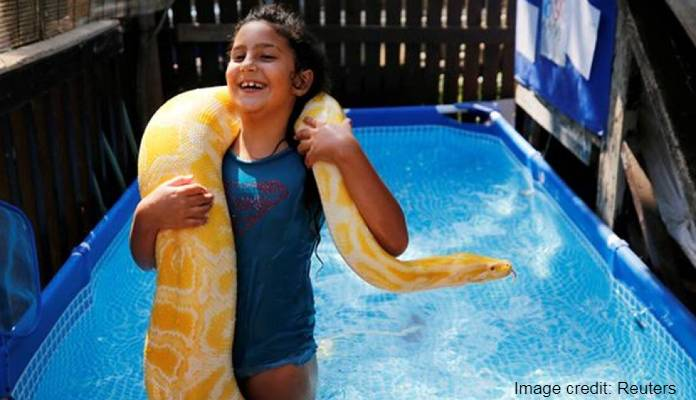 Meet the Israeli child who takes a 11-foot pet python swimming